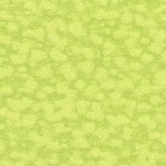 188 Papiplus dubb. krt st. A6 105x148 mm, 4 st. Limoengroen