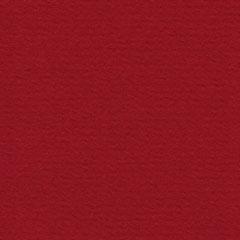 43 Original, framekaart bloemKerstrood