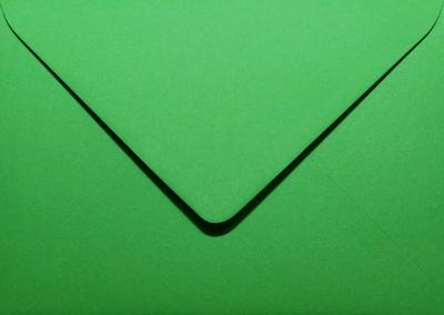 24 Envelop 11,0x15,6 CM Roma Weidegroen
