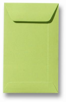 04 Envelop 6,5x10,5 cm (loonzakje) Roma Lindegroen