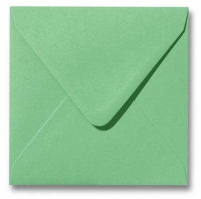 24 Envelop 12x12 cm Roma Weidegroen