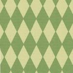 722 Fantasia, papier A4 210x297mm, 5 vel, Ruit Groen
