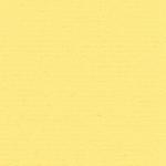 28 Original, framekaart bloem Narcisgeel
