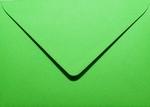 09 Envelop 11,0x15,6 CM Roma Appelgroen