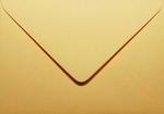 21 Envelop 11,0x15,6 CM Roma Chamois