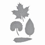 Shapeabilities Die D-lites S2-199 Leaves