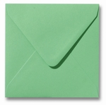 24 Envelop 14x14 cm Roma Weidegroen